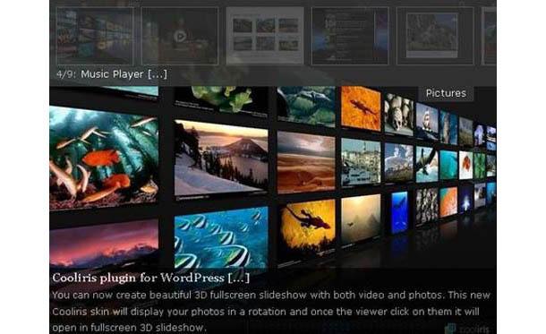 Wordpress Cincopa Gallery Plugin