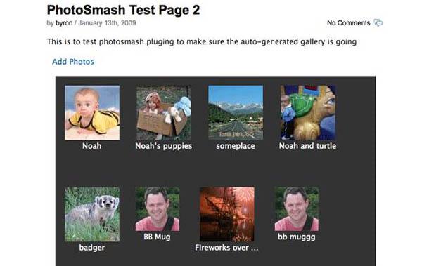 Wordpress Photo Smash Gallery